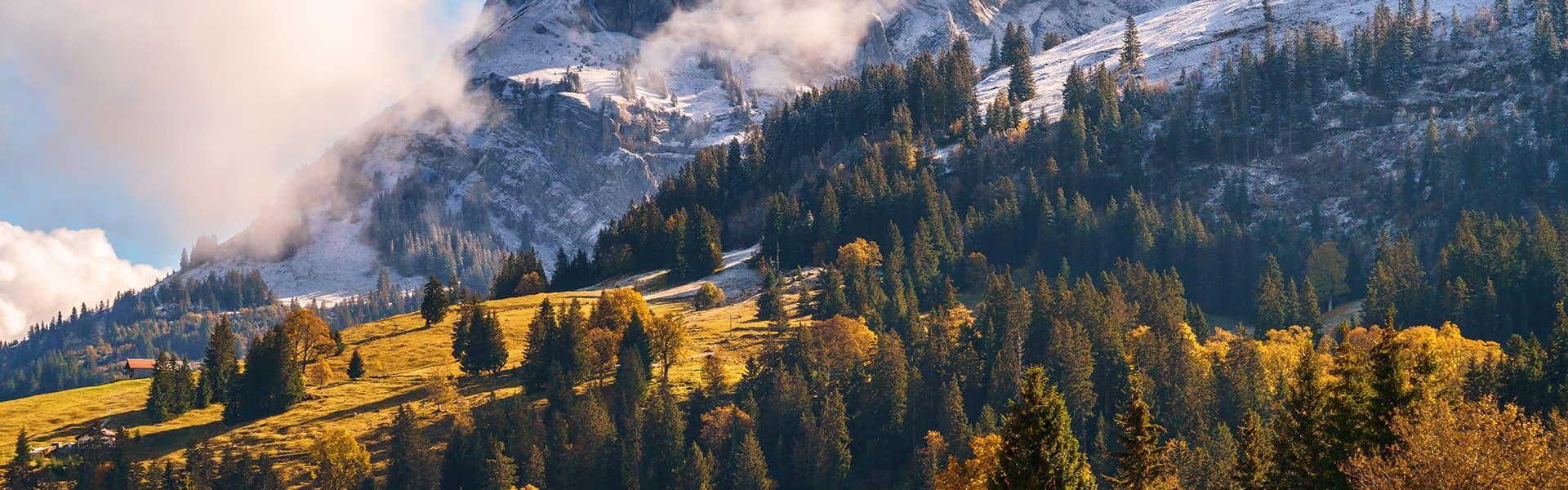 Regionalentwicklung - Volkswirtschaft Berner Oberland